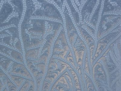 frost10.jpg