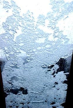 snowlace.jpg