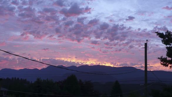 Dawn7July13_419am.jpg