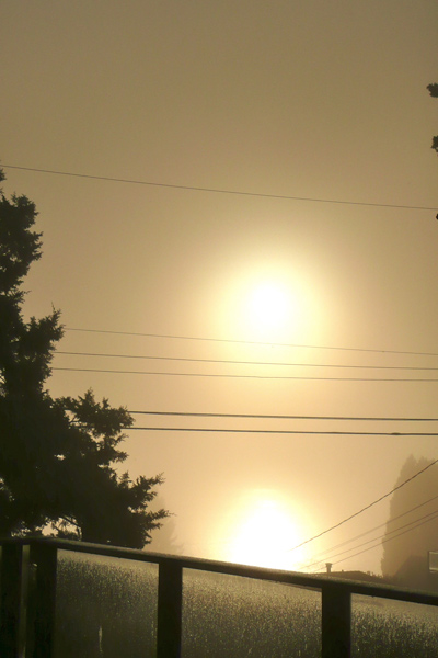 Fog15Nov12.jpg