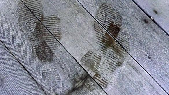 FootprintsFrost3.jpg