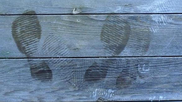 FootprintsFrost4.jpg