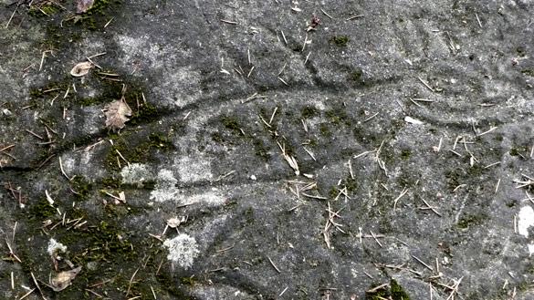 GabriolaPetroglyph113.jpg