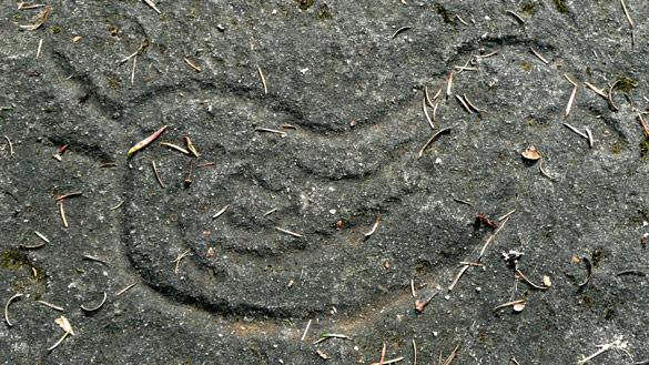 GabriolaPetroglyph99.jpg
