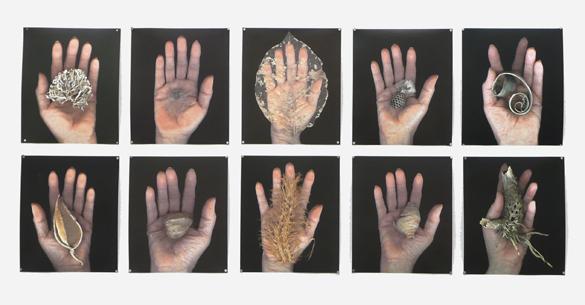 Hand-Series_all.jpg