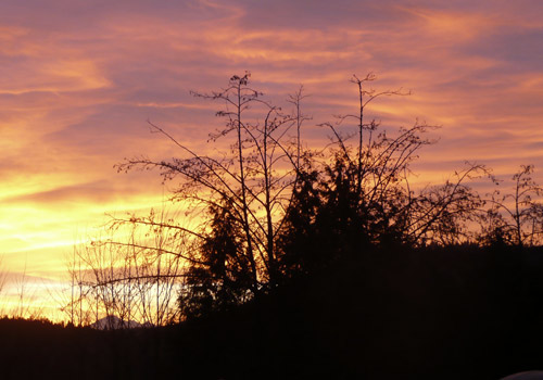 Sunrise7Jan2010_3.jpg