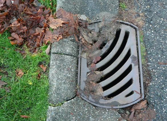 drain31Dec2012.jpg