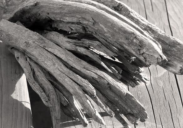 driftwood682.jpg