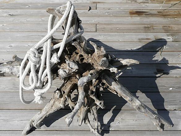 driftwood_rope.jpg