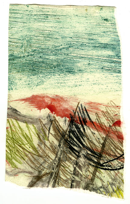 TornCollagraph6