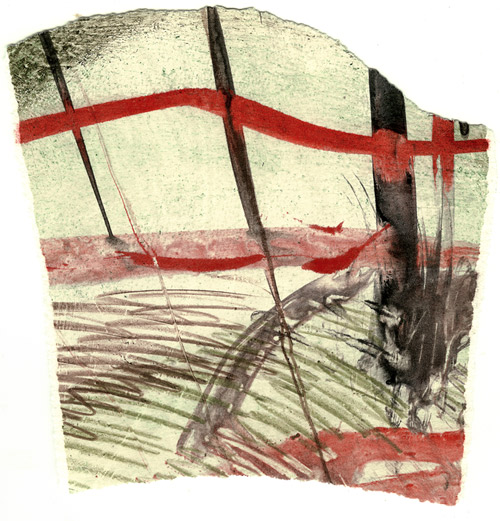 TornCollagraph7
