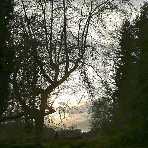 Ravenhill_99